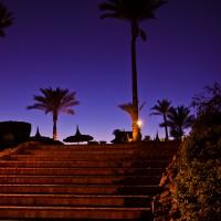 Palmer i solnedgang, kan det bli mer kitsch? Fra Sharm el Sheikh i Egypt.